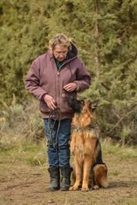 showline shepherd